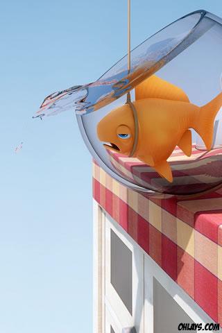 Fish iPhone Wallpaper