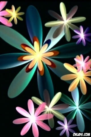 Flowers iPhone Wallpaper