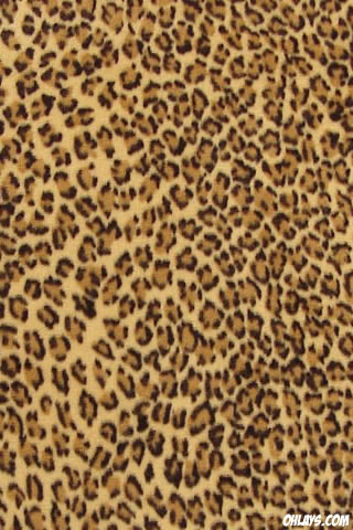 Leopard iPhone Wallpaper