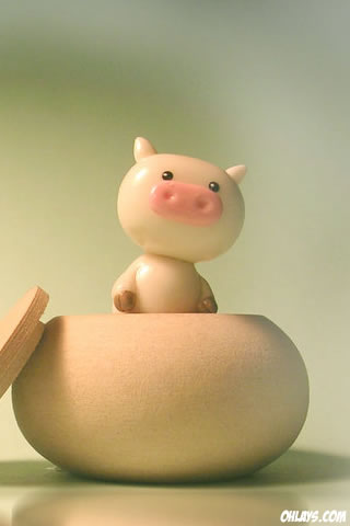 Pig iPhone Wallpaper