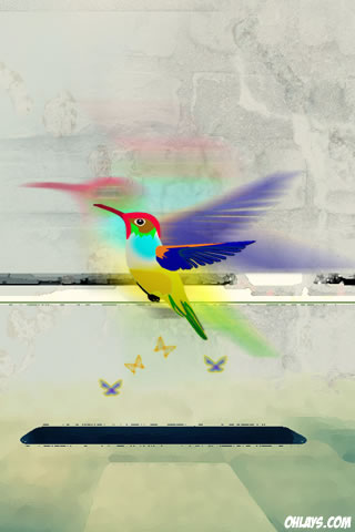 Hummingbird iPhone Wallpaper