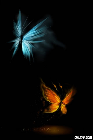 Butterfly Iphone Wallpaper 2657 Ohlays