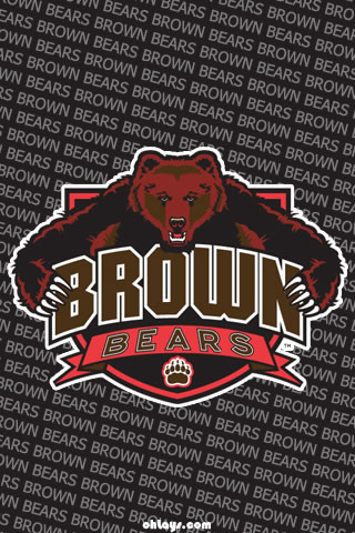 Brown Bears iPhone Wallpaper