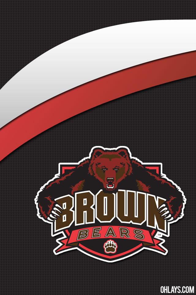 Brown Bears iPhone Wallpaper