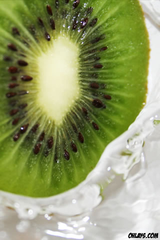 Kiwi iPhone Wallpaper