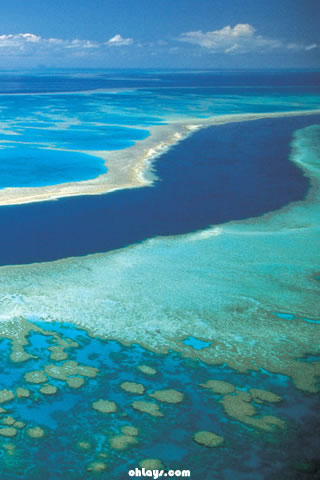 Great Barrier Reef iPhone Wallpaper