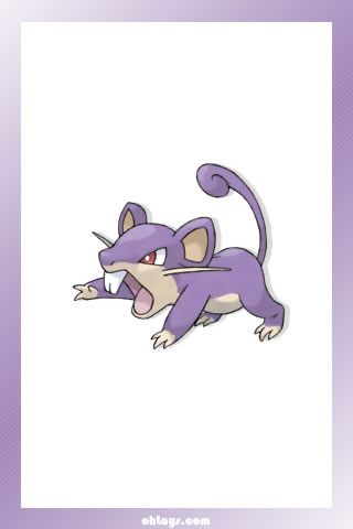 Rattata iPhone Wallpaper