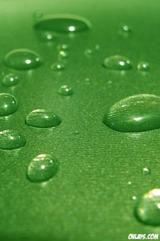 Water Drops iPhone Wallpaper