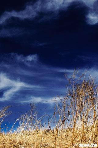 Sky iPhone Wallpaper