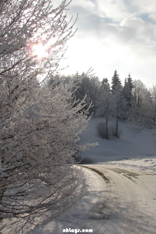 Snowy Road iPhone Wallpaper