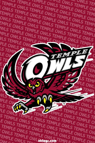 Temple Owls iPhone Wallpaper
